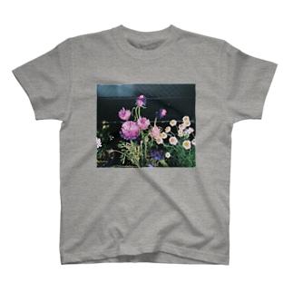 。 Tシャツ