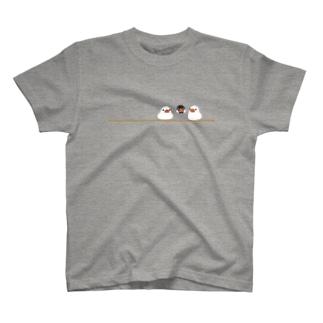 もちもち文鳥さん Tシャツ