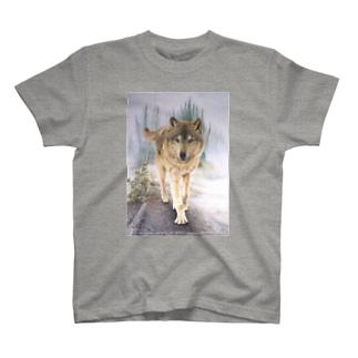 Forest of Kasilof  Tシャツ