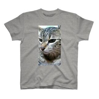 強運の持ち主ももちゃんです(^▽^)/ T-shirts