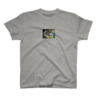 どこ見てるの?あなた? T-shirts