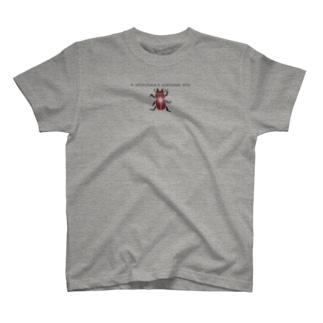 しまのなかま ヤエヤママルバネクワガタN. insulicola T-shirts