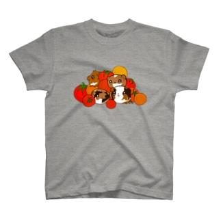 とまともるず T-shirts