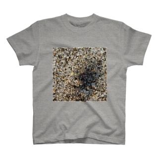 砂に擬態!?コメツキガニ T-shirts