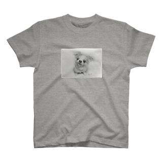 Riku Tシャツ T-shirts