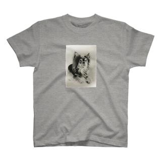 Rua Tシャツ T-shirts
