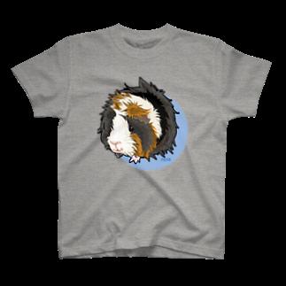 nins・にんずのアビシニアンモルモットのモルちゃん T-shirts