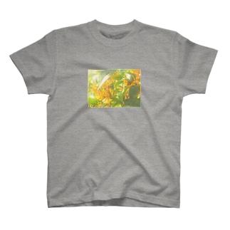 金木犀2 T-shirts
