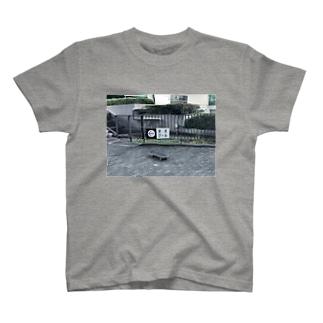 ←幼児プール T-shirts