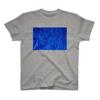 img_kusa003.jpg T-shirts