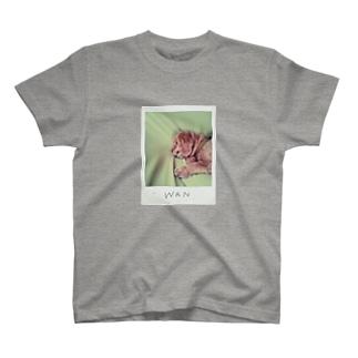 WAN2 T-shirts