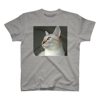 ゴメ屋のROMANOVフェイス T-shirts