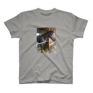 夏馬 T-shirts