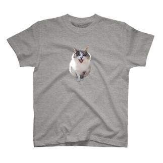 ゴンザレスちゃん T-shirts
