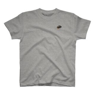 ヒメマルカツオブシムシ T-shirts