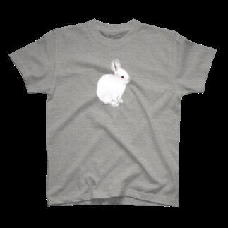 ヒラノマキコの2018.10月うさぎ T-shirts