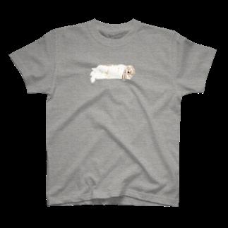 ヒラノマキコの2017.02月うさぎ T-shirts