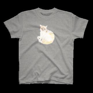 ヒラノマキコの2017.07月ねこ T-shirts