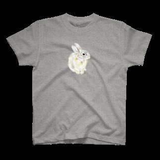 ヒラノマキコの2016.03月うさぎ T-shirts