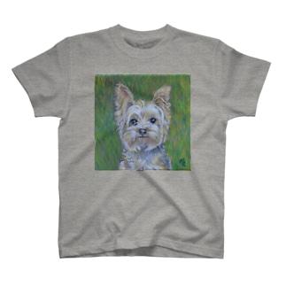 犬・草原のヨークシャC1 T-shirts