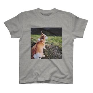 元旦から深く遠い目をしているいぬ(コーギー) T-shirts