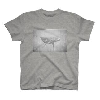 BST_Whale T-shirts