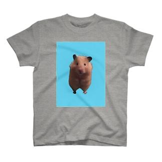 ポンちゃん直立 T-shirts