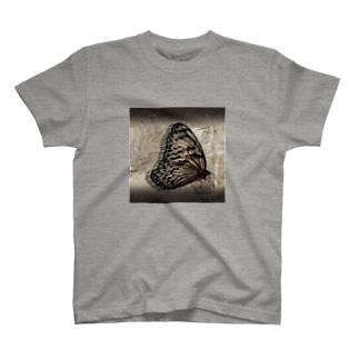 Swallowtail butterfly  アゲハチョウ T-shirts