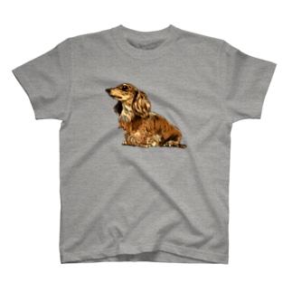 ゆきじの T-shirts
