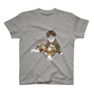 スコ座りのたんたん T-shirts