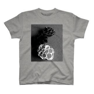 蓮の実 T-shirts