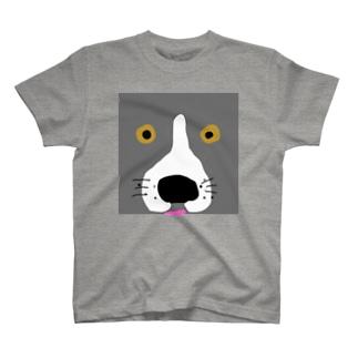 ユーノ T-shirts