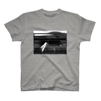 ame full T-shirts