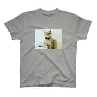 こじたん T-shirts