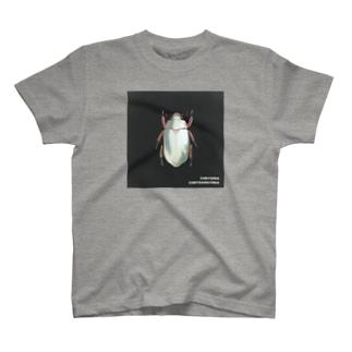 キンギンコガネ T-shirts