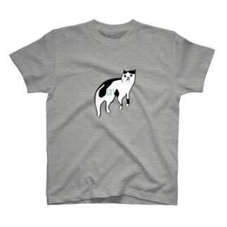ヅラCAT T-shirts