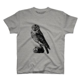 フクロウ <アンティーク・プリント> T-shirts