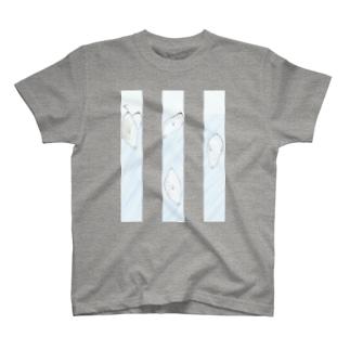 あざらしギュ T-shirts