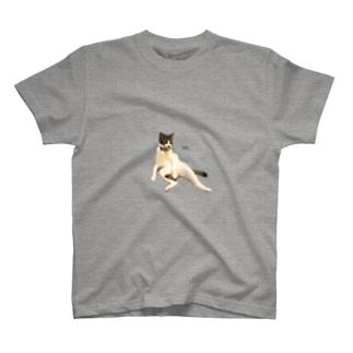 ミロくんおっさん座りTシャツ T-shirts