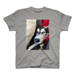 見つめる先には… その2 T-shirts