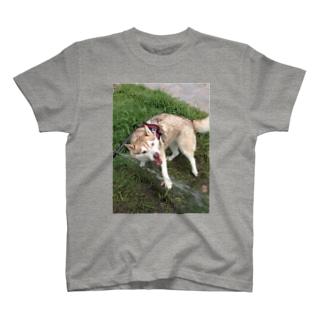 がおーだぞ! T-shirts