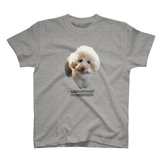 シャンプーしたわん🐶 T-shirts