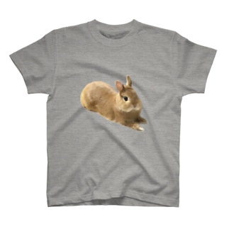続・ニコタロ T-shirts
