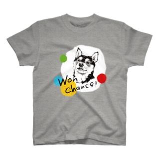 Won chance! 黒柴(hiroko) T-Shirt