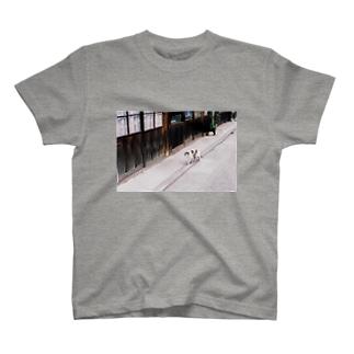ご近所猫 T-shirts