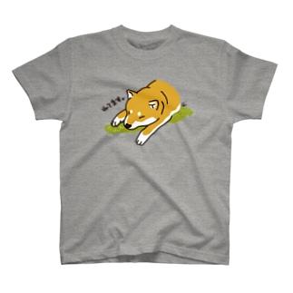 ねてます。柴犬 T-Shirt