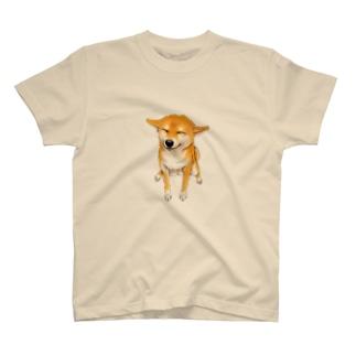 笑う柴犬 Tシャツ