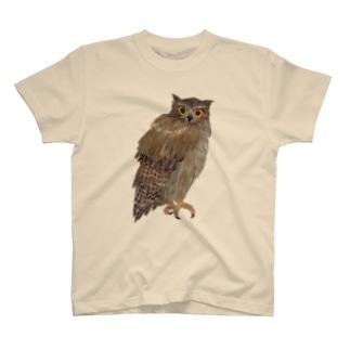 こちらを観察するシマフクロウ Tシャツ