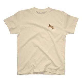 パグのもぐお(写真) Tシャツ