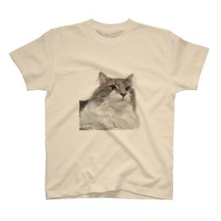 ジルちゃん Tシャツ
